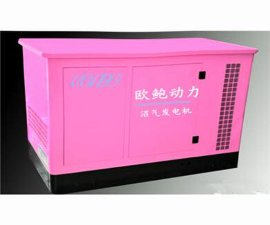 沼氣發電機組-上門安裝調試