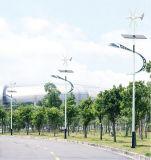 太陽能路燈安全可靠哪家強?首選騰博太陽能