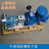 上海诺尼TR系列防爆型转子泵 防水型转子泵