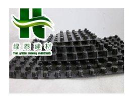 武汉HDPE地下室排水板/地下室坡道排水板