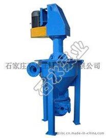 泡沫泵泵头,石家庄工业泵厂,金矿泡沫泵
