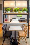 麦德嘉KFC008肯德基快餐桌椅简约实木餐桌椅餐厅桌椅定制