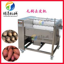 供应TS-M300毛刷 地瓜清洗机