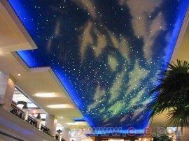 LED水下光纤灯 光纤灯价格 满天星光纤灯