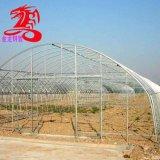 30*70镀锌椭圆管建12米跨度大棚管需要多少钱