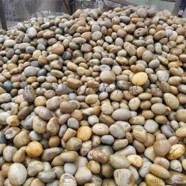 8-12公分黄色鹅卵石_天然黄色鹅卵石批发!