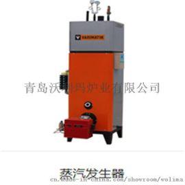 沃利玛燃气蒸汽发生器