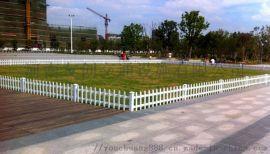别墅公园 pvc塑钢草坪护栏花园白色 绿化带隔离栅