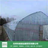 花卉蔬菜大棚-小型日光溫室骨架-青州德源