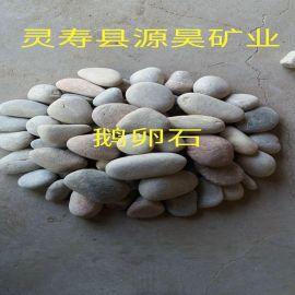 各种规格鹅卵石滤料现货供应批发