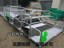 徐州母猪分娩产床,2.2*3.6双体母猪产床