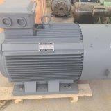 大功率稀土永磁发电机定制厂家直销各种功率低速永磁发电机