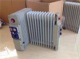 11片防爆电暖气,2KW防爆油汀取暖器