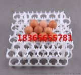 塑料蛋託廠家 新型塑料雞蛋託 塑料雞蛋託圖片