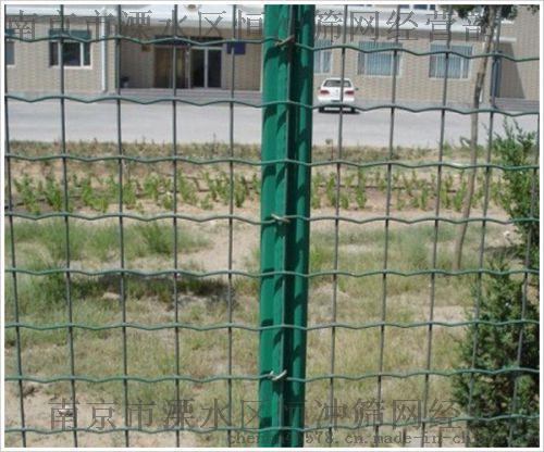 養雞圍欄網散養雞圍欄果園防護網圍欄養殖網防護網養殖場荷蘭網
