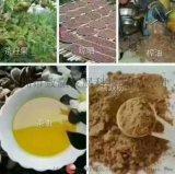 广西巴马茶麸姜原浆冼发乳