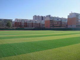 供应通辽室内足球场人造草坪