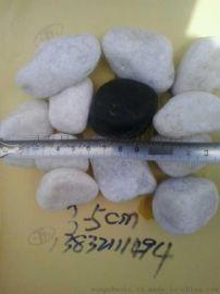 厂家批发白色鹅卵石 机制白色鹅卵石价格 雪花白鹅卵石
