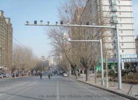 工厂定制6米8米路灯 小区LED道路照明灯