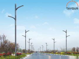 泰格LED照明灯、双臂路灯,户外路灯、太阳能路灯