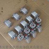 CB-E1.5-ST雙向齒輪泵