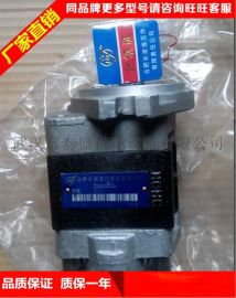 合肥长源液压齿轮泵带孔)齿轮泵CBT-F422-花右(法兰)齿轮泵