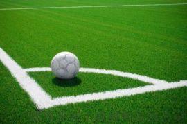 河南人造草坪足球场人造草坪为何选用的人越来越多