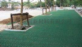 山东生产塑料植草格