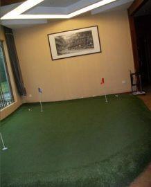 室内高尔夫PGA专业人工果岭