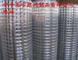 渡锌电焊网铁丝网电焊网