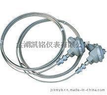 WZ铠装热电阻安装