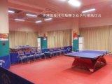 专业乒乓球球馆灯光照明设计与工程