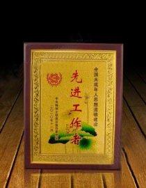 **集体奖牌 政府单位杰出贡献木牌 示范单位木牌定制