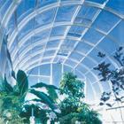 北方专业阳光板生产