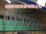 猪舍标准母猪保胎限位栏养猪设备母猪定位栏育肥栏报价
