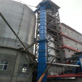 垂直式仓储物料挖斗提升机 石粉链式提升机