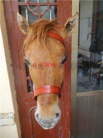 仿真马模型马头标本挂件
