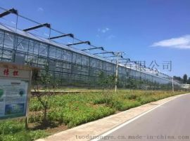 宜宾广安达州恒温智能温室大棚育苗室连栋温室大棚