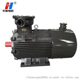 防爆变频调速三相异步电动机YBVP大功率电动机