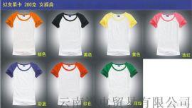 定做廣告衫-昆明棉海服飾衫_多種價位_