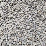 遂寧哪余有鵝卵石賣_鵝卵石遂寧銷售_廠家批發。