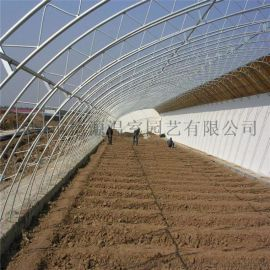 日光温室 蔬菜温室大棚 温室工程厂家
