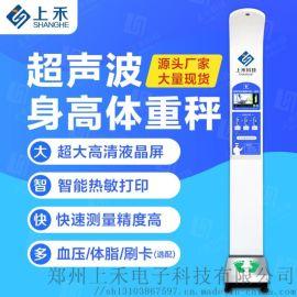 全自动身高体重测量仪 超声波人体秤SH-500A