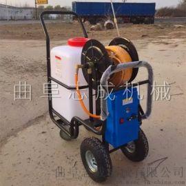 志成ZC-60型手推式打药机养殖场电动消毒车