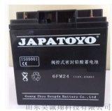 武汉市东洋蓄电池6-GFM-24原装现货总代理