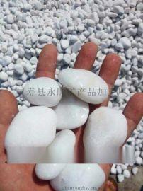 宝鸡优质白色鹅卵石   量大从优 点击查看