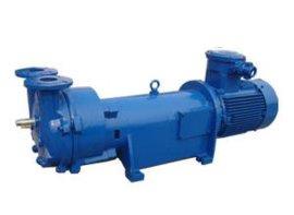 2BV不锈钢水环真空泵