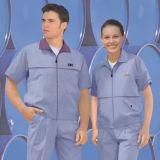 厂家供应 保洁服(短袖装)加工 定制