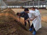 臨沂生物有機肥, 臨沂有機肥廠家, 臨沂有機肥價格