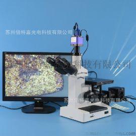 XJL-17AT-550HS型三目倒置金相显微镜供应商 金属结构分析显微镜厂家
